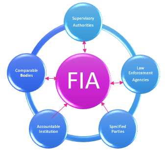 FIA Cycle